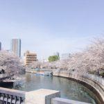【東京・ 深川】お花見クルーズさくら回廊お花見クルーズ2021